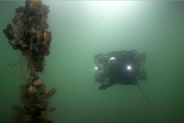 SRV-8 ROV orbiting buoy line with coral and muscles attached in ocean with lights focused on buoy line